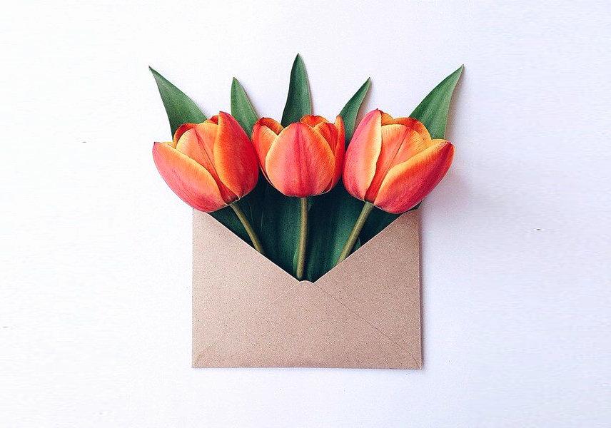 květiny z obálky přání k svátku